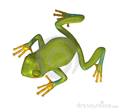 Green Gold Tree Frog 300 dpi