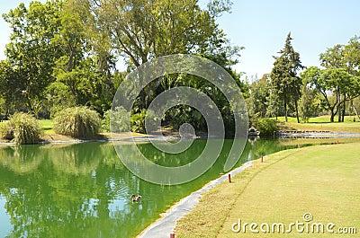 Green golf lake