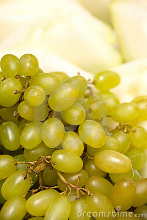 Green Grapes and Melon