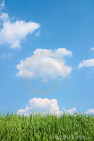 Free Green Grass And Beautiful Blue Cloudy Sky. Royalty Free Stock Photo - 803545