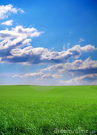 Free Green Grass And Blue Sky Royalty Free Stock Photo - 2171655