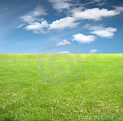 Free Green Grass And Sky Royalty Free Stock Photo - 14934275
