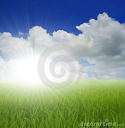 Free Green Grass And Sky Stock Image - 3455151