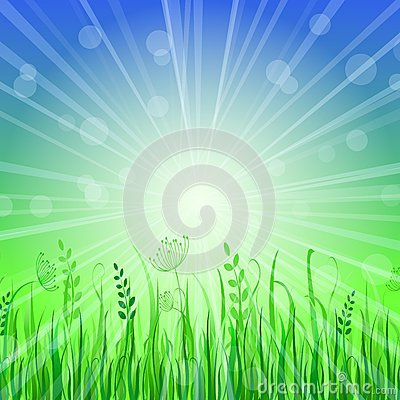 Green Grass Background over Blue Sky