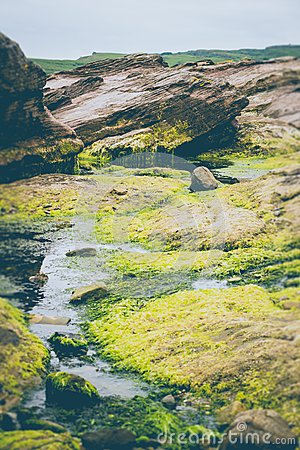 Green Grass Field Near Body Of Water And Rocks Free Public Domain Cc0 Image
