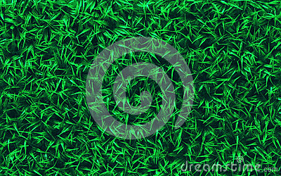 Green grass field use as nature background backdro