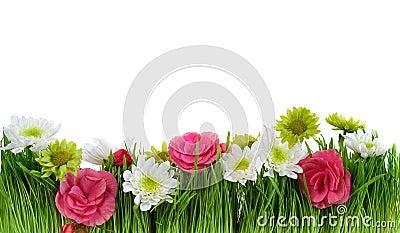 Green grass flower frame