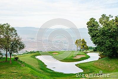 Green grass on golf field