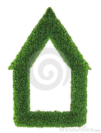Green grass house frame