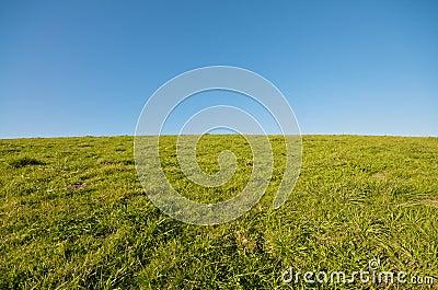 Green Grass Landscape and blue sky at Berkeley Mar