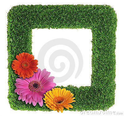 Green grass picture frame with flowers