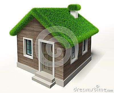 Green grass roof house