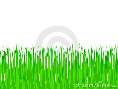 Green grass (seamless pattern)