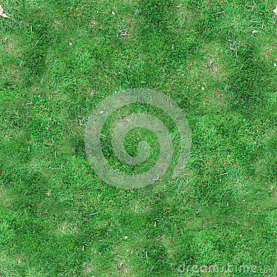 Green Grass Seamless Tile Texture