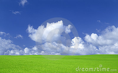Green grass and sky with clouds.