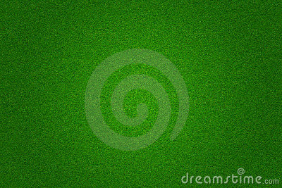 Green grass soccer or golf field background Stock Photo