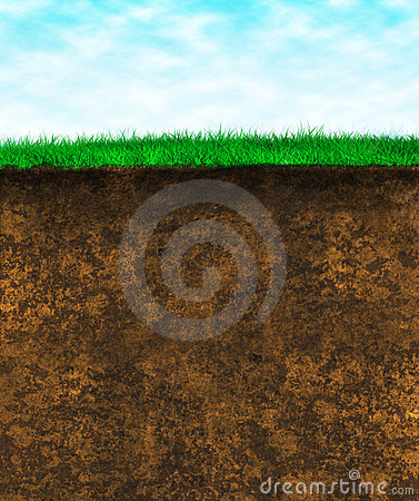 Free Green Grass Soil - Texture Surface Royalty Free Stock Photography - 23529047