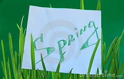 Green grass with a sticker Spring