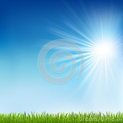 Green Grass And Sun Beam