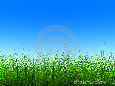 Green grass thin