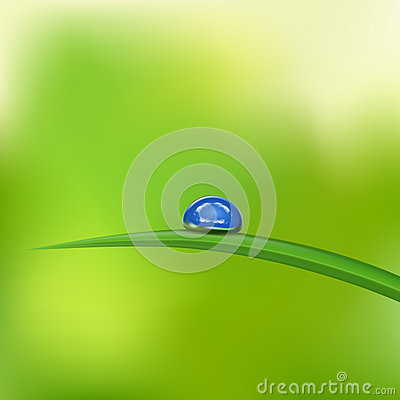 Green grass with waterdrop against blue sky