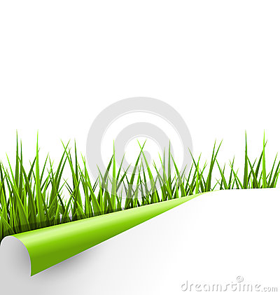 Free Green Grass With Ripped Paper Sheet Isolated On White. Floral Ec Royalty Free Stock Images - 51661989