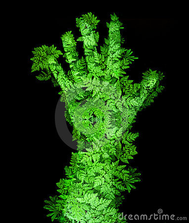 Free Green Hand Royalty Free Stock Photo - 8811225