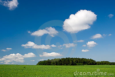 Green hill with clear blue sky