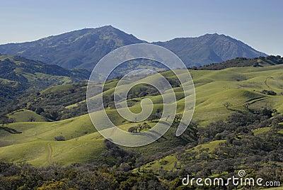 Green Hills of California