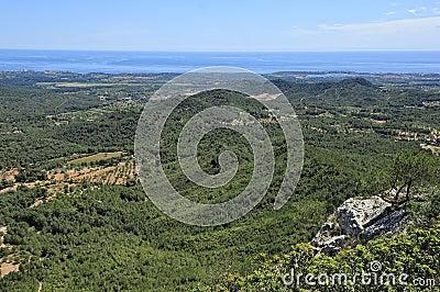 Green hills of Majorca