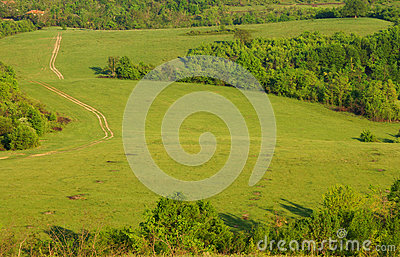 Green hills and meadow with road