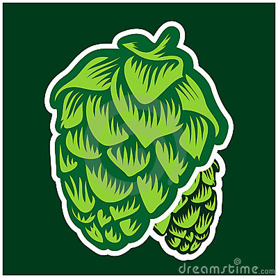Free Green Hops Stock Photos - 16602223