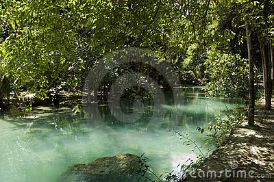 Green Kawasan river and foliage