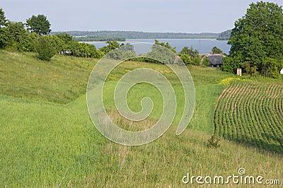 Green landscape - fields by Wigry Lake