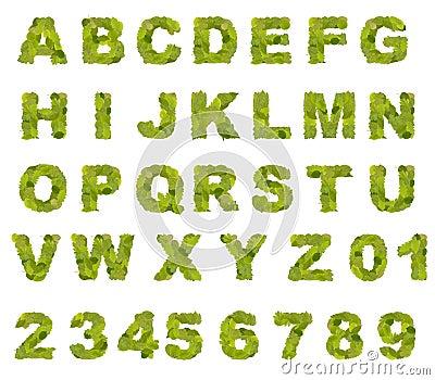 Green leaf alphabet
