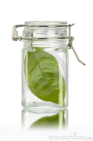 Green leaf in a bottle save the earth