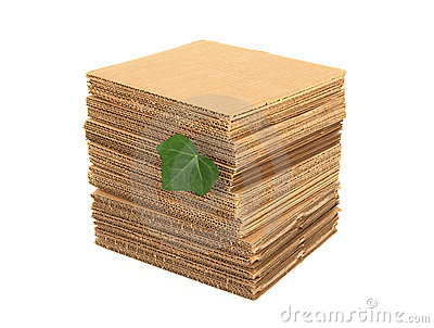Green leaf and pile of cardboard