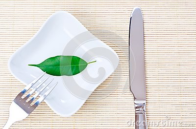 Green leaf on a plate as vegetarian diet