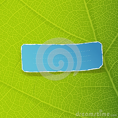 Green leaf texture and blue torn label