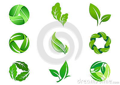 Green Leaf vector logo  design and icon