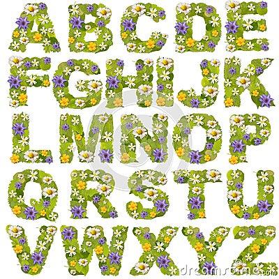 Green leaf whit flower fonts