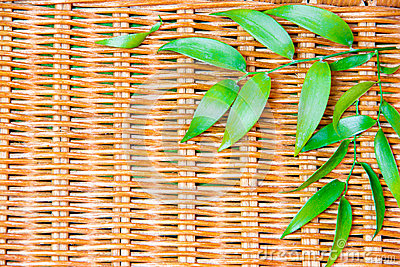Green leafs on wicker wood
