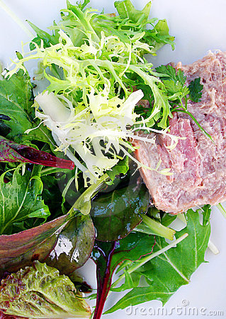 Green leafy lettuce salad with pate
