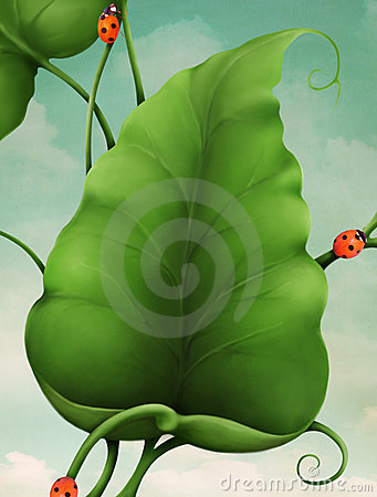 Free Green Leaves And Ladybugs Royalty Free Stock Image - 13701656