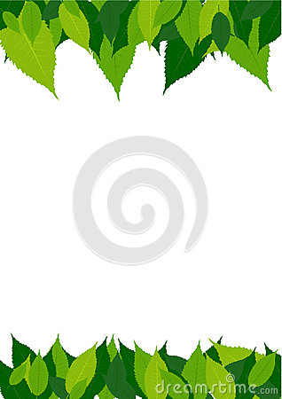 Green leaves border Vector Illustration