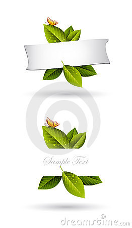 Free Green Leaves Frame Background Stock Photography - 21571912