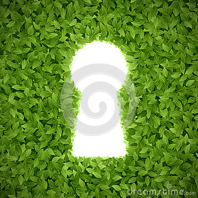 Green leaves with keyhole