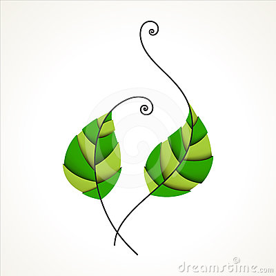 Green leaves. Nature, organic & ecology icon