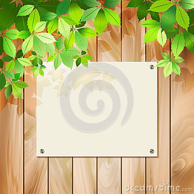 Free Green Leaves On A Wood Texture. Vector Background Royalty Free Stock Photo - 29272585