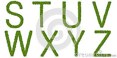 Green leaves S-Z